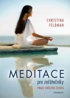 Meditace pro začátečníky - Praxe bdělého života