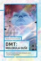 DMT: molekula duše: Zkoumání podstaty stavů blízkých smrti a mystických prožitků